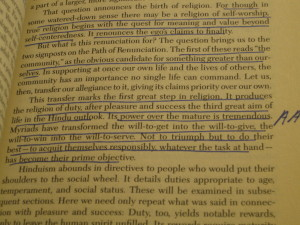 DFW's Annotations in Smith's The World's Religions